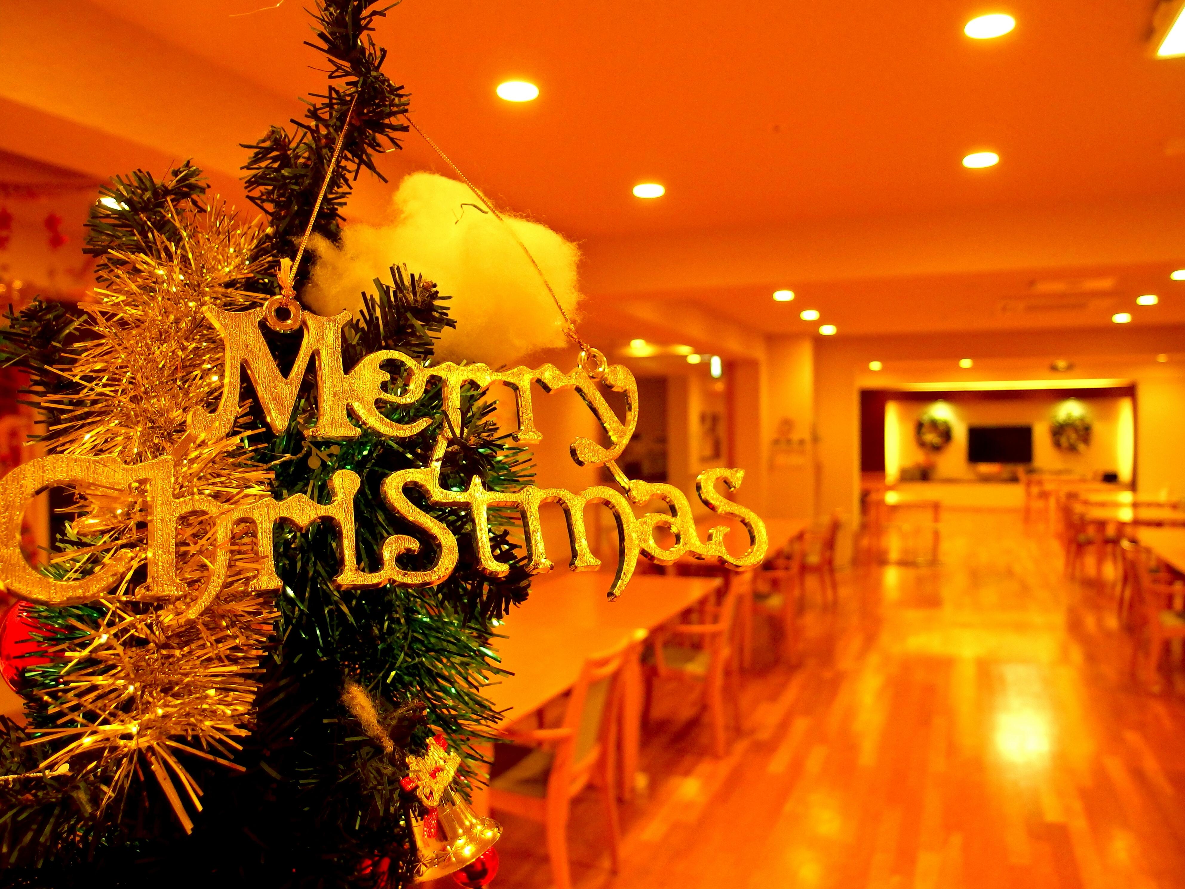 イリーゼ流山はついしクリスマス会